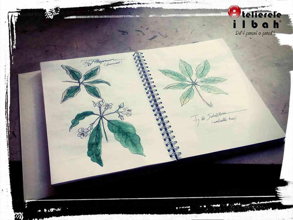 curs-decorator-floral-5