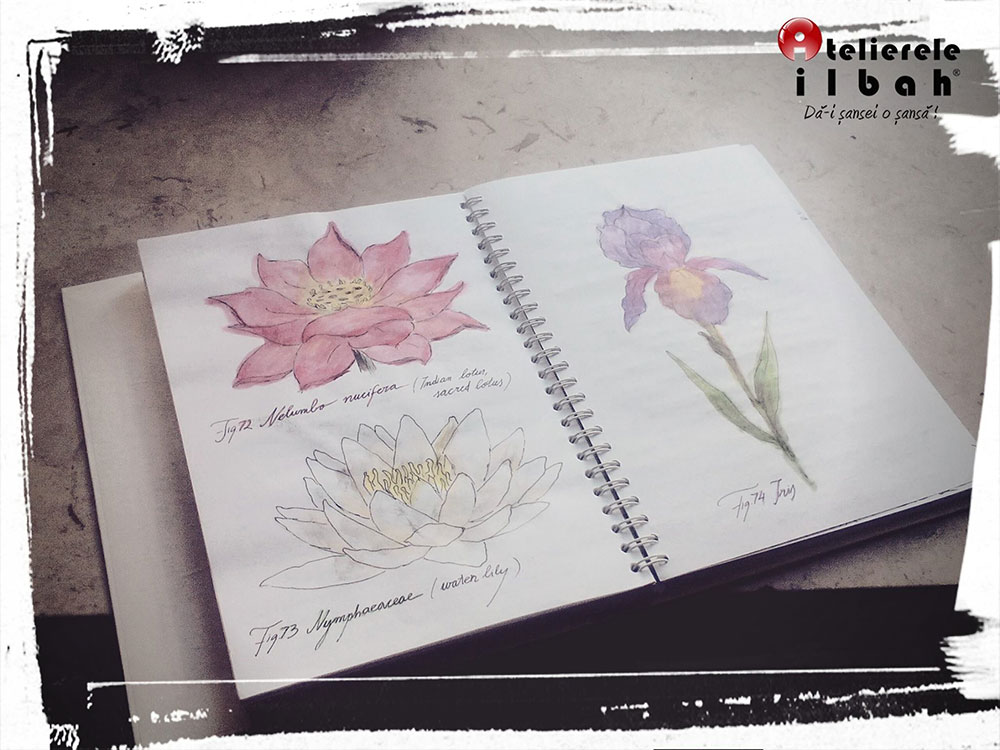 curs-decorator-floral-6