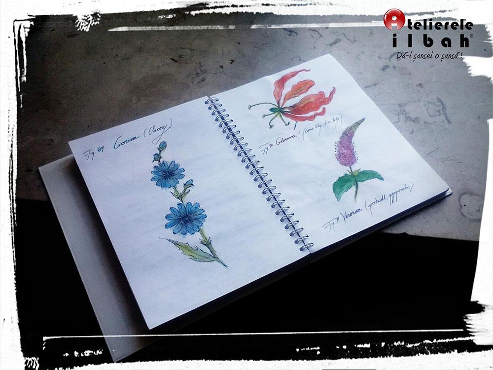 curs-decorator-floral