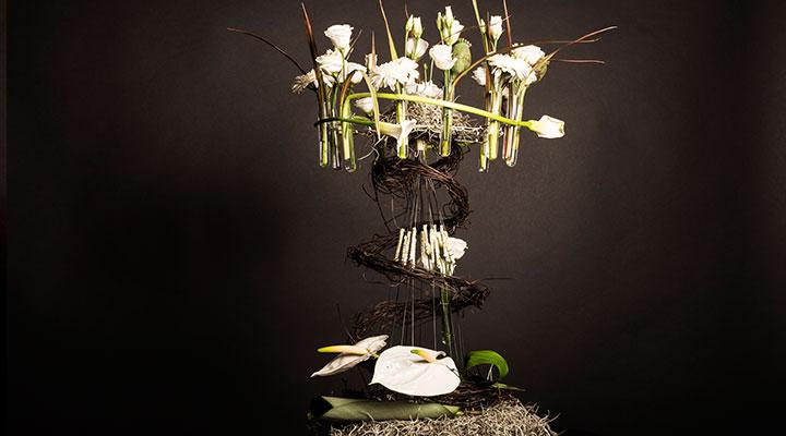 concurs-flower-design-flower-contest-2017-6