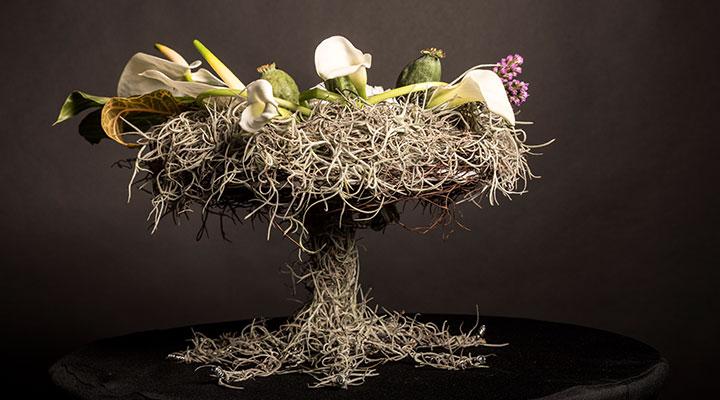concurs-flower-design-flower-contest-2017-8