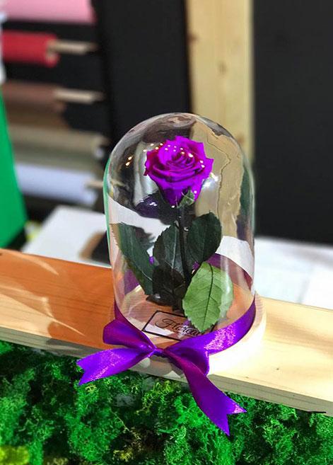 curs-decorator-floral-maison-floreal-bogdan-stefan-design-floral-atelierele-ilbah-18