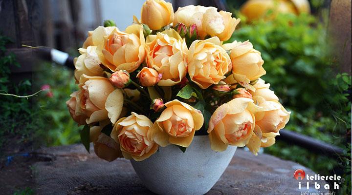 curs-decorator-floral-atelierele-ilbah-design-flori-3