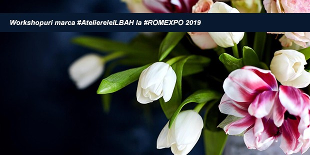workshopuri-marca-ateliereleilbah-la-romexpo-2019-COVER-1-620x310