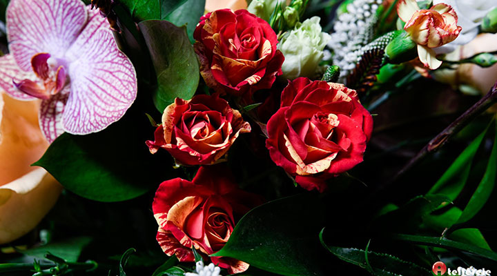 curs-design-floral-hobby-15