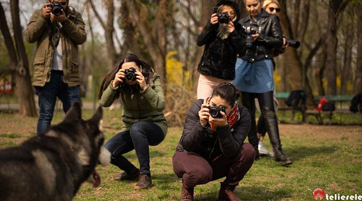 curs-fotografie-hobby-amatori-pasionati-8