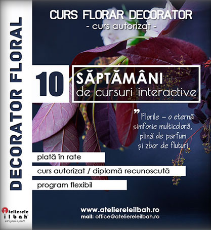 curs-decorator-florar